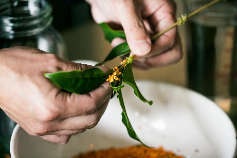 秋の始まりには、庭に咲く金木犀をつんで酵母を起こす