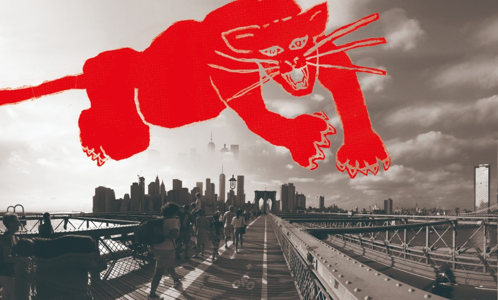 ニューヨークのブッシュウィックの写真