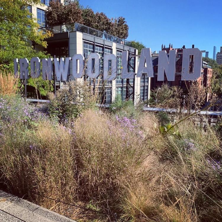 ハイラインではいくつかの現代美術が楽しめます。「IRONWOODLAND」と書かれた植栽にたたずむ文字はセーブル・エリス・スミス(Sable Elyse Smith)の「C.R.E.A.M.」という作品で、2019年の3月まで見ることができる
