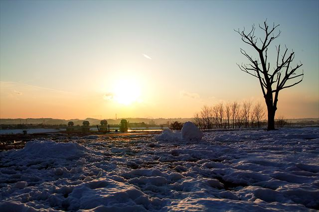 荒涼とした原野、写真で見るとその瞬間に自分が東京にいたとは思えない。これも写真の持つ表現力だ。Canon EOS-1DX Mark II EF16-35mm F4L IS II USM SP:1/640 F:8.0