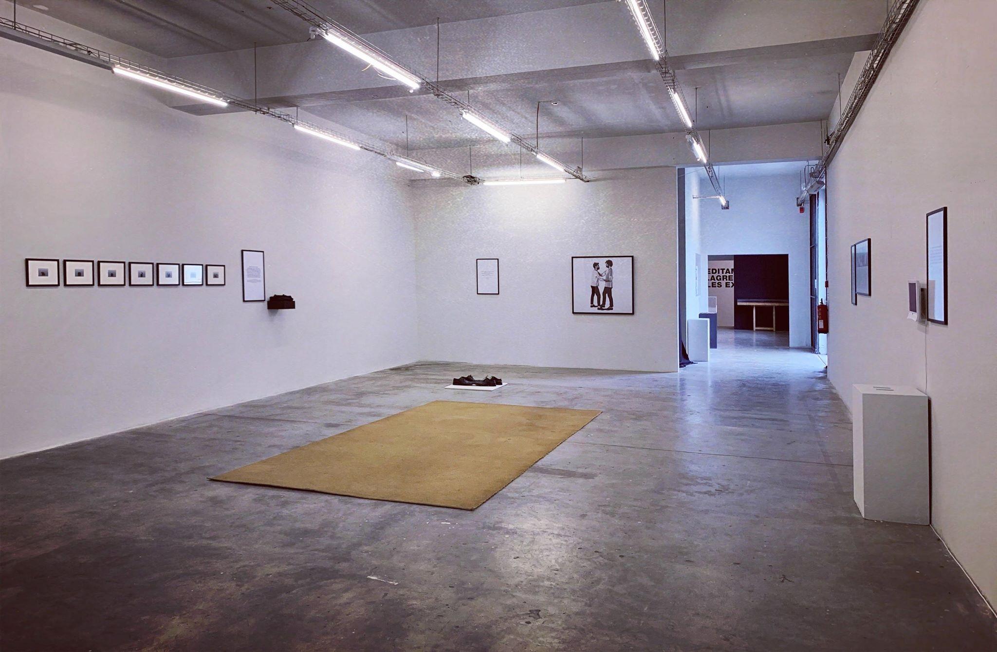 CAAAのギャラリーの一つ。写真はテラ・デ・ペアオとジョアオ・オリヴィエイラさんらのパンタナール展の風景