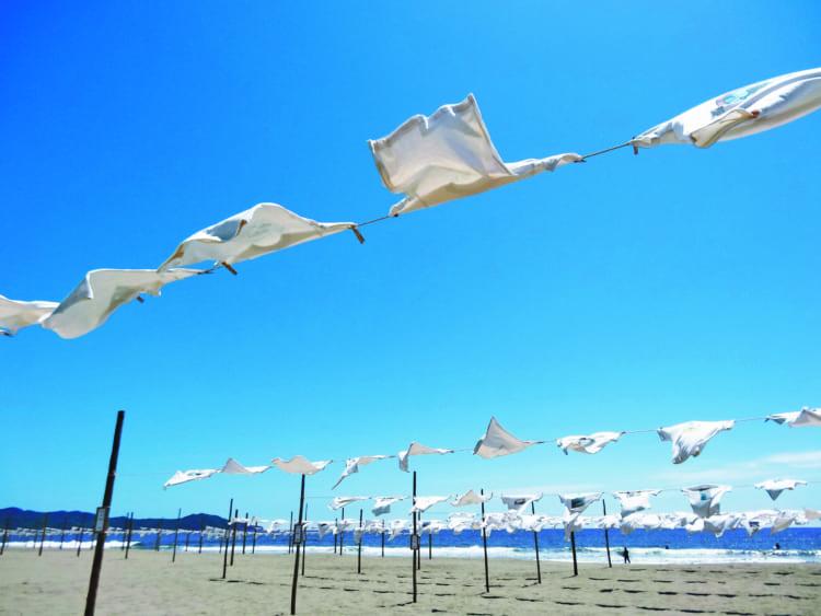 「高知を旅して、最も正体不明だった観光地」砂浜美術館で見たもの