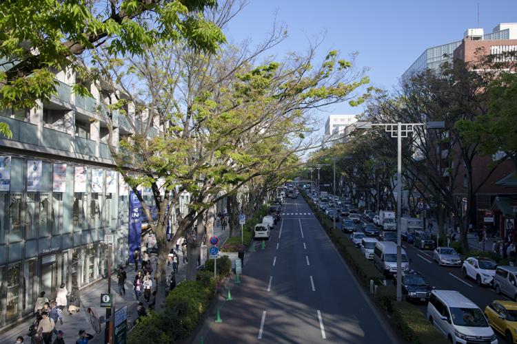 左手には表参道ヒルズ、通りの先には青山通り。「表参道」を象徴するエリア