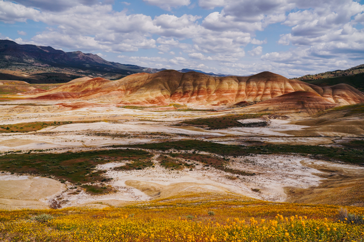 『スタンド・バイ・ミー』のロケ地と壮大な乗馬体験に感動 アメリカ、オレゴン州を旅して