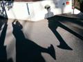 原宿の街角でプロに学ぶ、光と影を意識したスナップ撮影のテクニック
