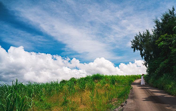 """""""通""""は竹富島で宿泊 何度訪れても楽しめる沖縄の旅(前編)"""