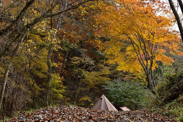 今年はおうちでまったりお正月 ふもとっぱらキャンプ場の年越しキャンプを振り返る
