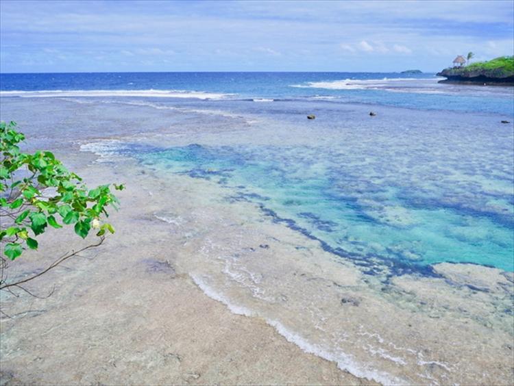 """直行便でラクラク! """"南太平洋の楽園""""フィジーで伝統文化を体験"""