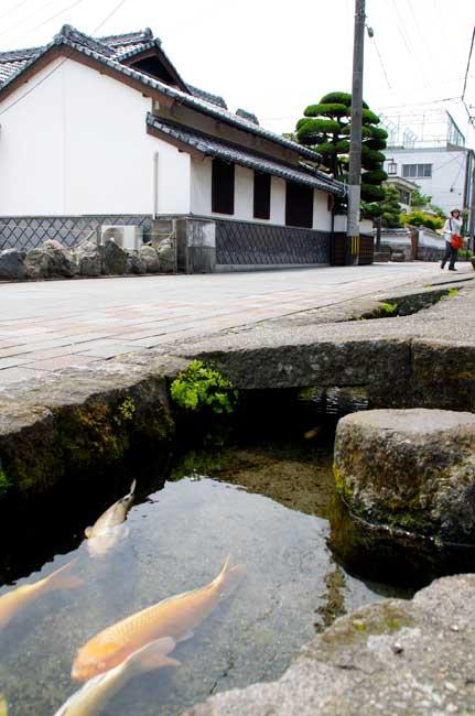 島原湧水群は日本名水百選のひとつ