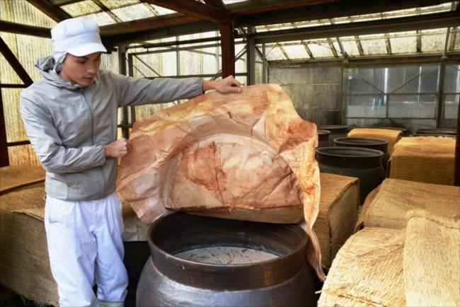 柿渋と布海苔を塗った和紙のふたを開けて、発酵のようすを見る