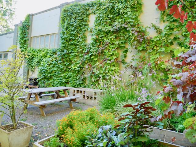 ポートランドを代表するファインダイニング「カスターニャ」はグリーンに包まれた気持ちのいいスペース。地元の人が日常使いできるニューアメリカ料理のビストロ「ザ・カフェ カスターニャ」も併設しています