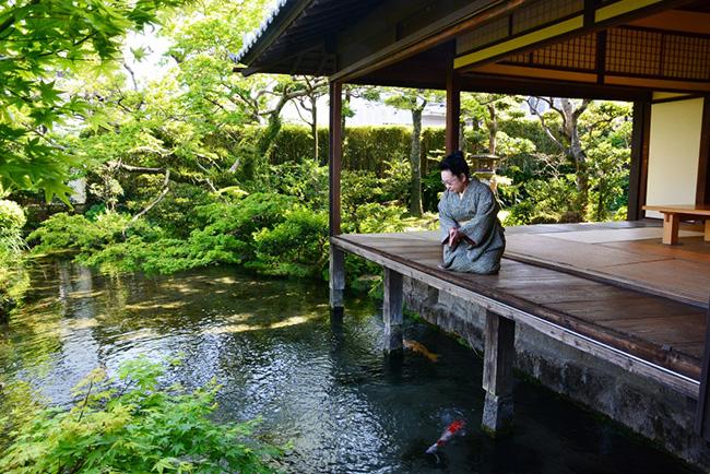 水と緑、日本建築が一体となった「四明荘」の風景