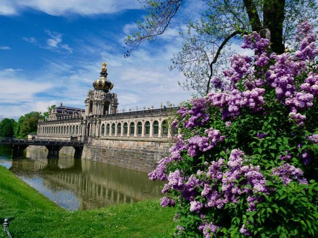 「花と世界遺産」や「花と歴史的建造物」を組み合わせた写真がドイツの写真好きの間で人気だそう。写真はドレスデンのツヴィンガー宮殿