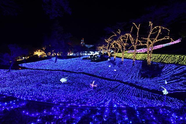 圧倒的な光の世界へ 東京から1時間の関東最大イルミネーション「さがみ湖イルミリオン」をリポート