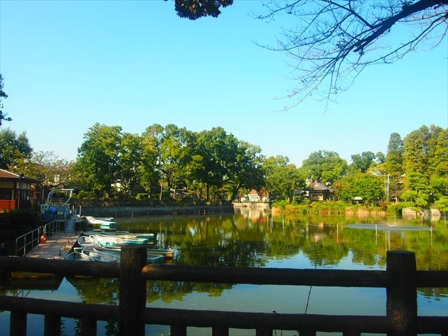 碑文谷公園のボート乗り場付近からの眺め。弁天池には紅葉が始まった木々が映し出されている