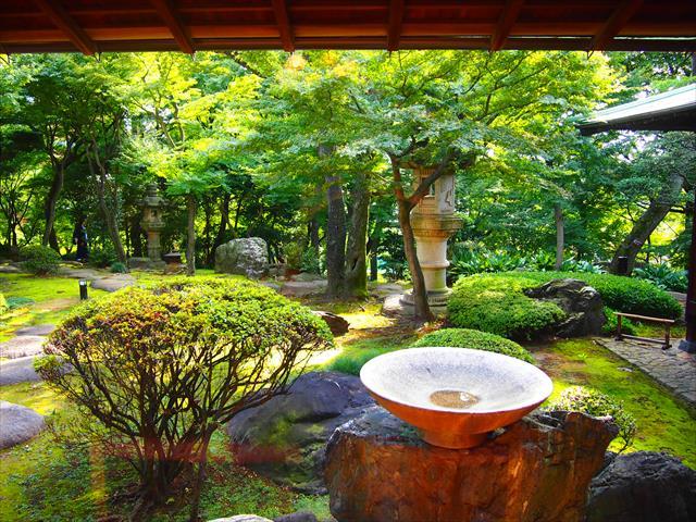 旧朝倉家住宅の第1会議室から見た回遊式庭園。代官山にいることを忘れてしまう趣のある庭園だ。ベンチに座って心ゆくまで庭園を眺めていたい