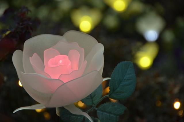 より実物のバラに見えるようつくられたバラの電飾