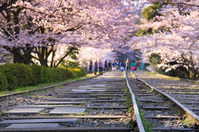 約582メートルに渡る傾斜鉄道跡地は世界最長。レール沿いに歩く、映画のような体験を楽しみたい。