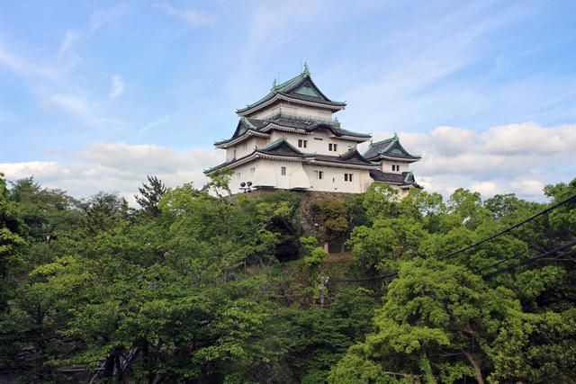 虎伏山山上に白亜の天守閣を見せる和歌山城