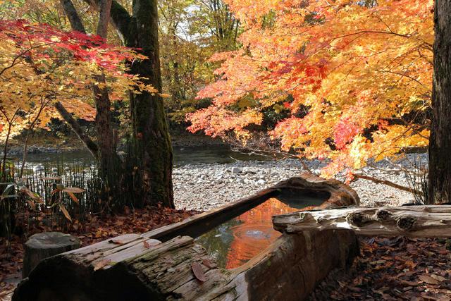 紅葉が美しい「トチニの湯」