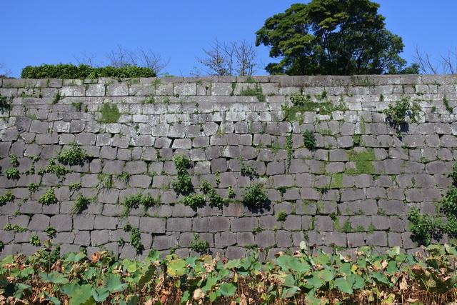 鹿児島城の本丸に残る石垣