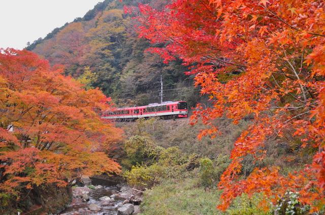 貴船口駅付近を走る叡山電車(画像提供:叡山電鉄)