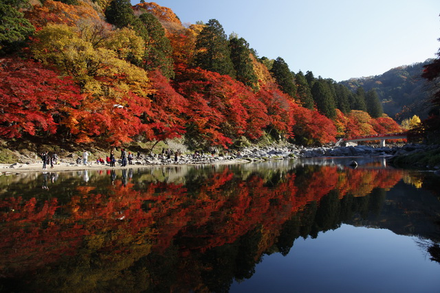 香嵐渓で赤く色づく飯盛山と巴川(画像提供:ツーリズムとよた)