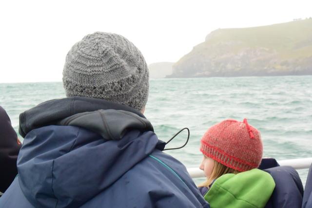 M. V. モナーク号のワイルドライフクルーズ。出港してすぐに海鳥のコロニーなど、見どころが連続