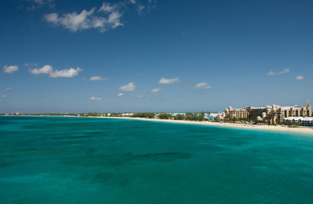 エイとキスすると7年ラッキー? カリブ海のグランドケイマン島