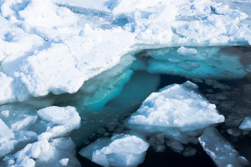 流氷クルーズに氷平線トレッキング、「氷の世界」北海道・知床根室を旅する