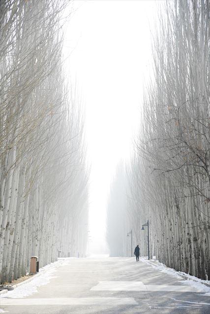 マランからクチャへ、玄奘三蔵が歩いたシルクロードの旅(3)