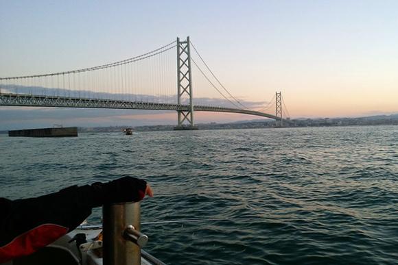 狙いは脂ノリノリの「白ハマチ」 兵庫県・明石海峡でノマセ釣り