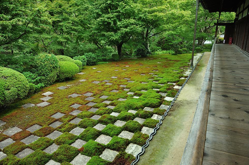 モシュ印にコケ寺リウム 京都の寺社で楽しむ苔アート<フォトギャラリー>
