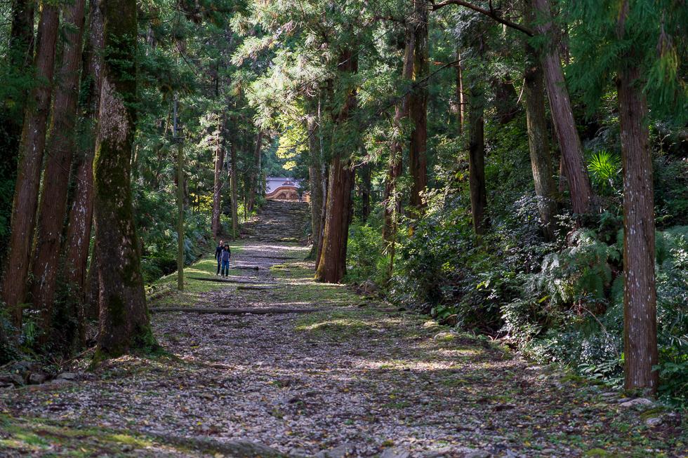 IT秘境・徳島県神山町は観光地としても魅力いっぱい<フォトギャラリー>