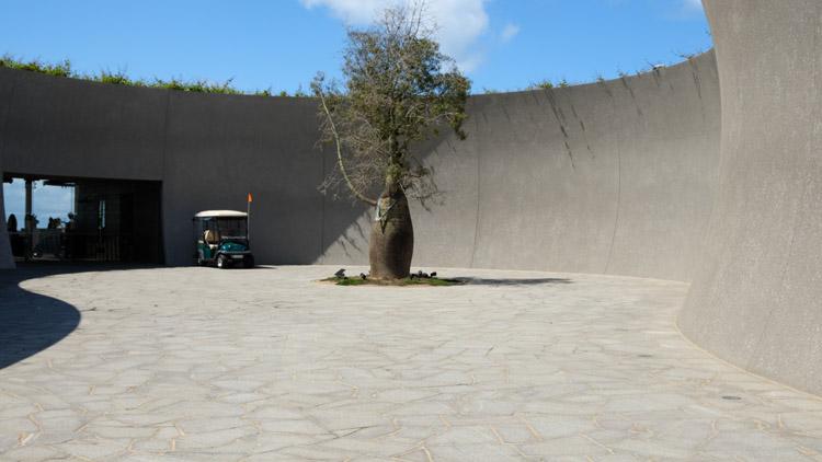 エントランスの前にはボトルの形をした木がそびえ立ち、その周りを彫刻家インゲ・キングが手がけた高さ6mの壁に囲む