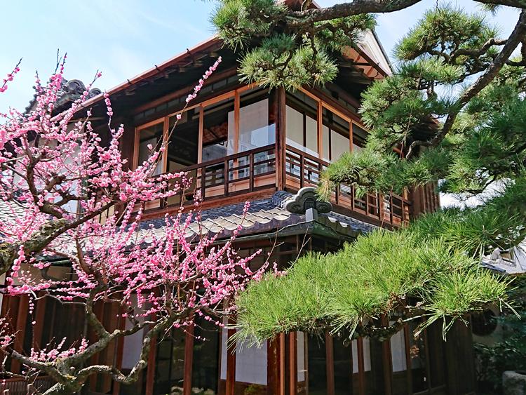 歴史のまち「奈良県桜井市」に旧建築を生かした宿やレストランがオープン
