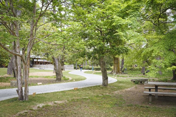 新緑の京都御苑散策に 緑に開かれた「中立売休憩所」