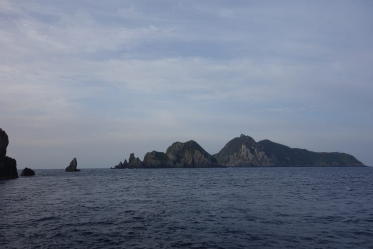 男女群島でイシダイと格闘 長崎県・五島沖