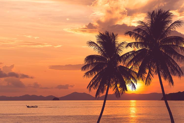 トロピカルテイストのポテトチップスを食べて、ハワイへ行こう!