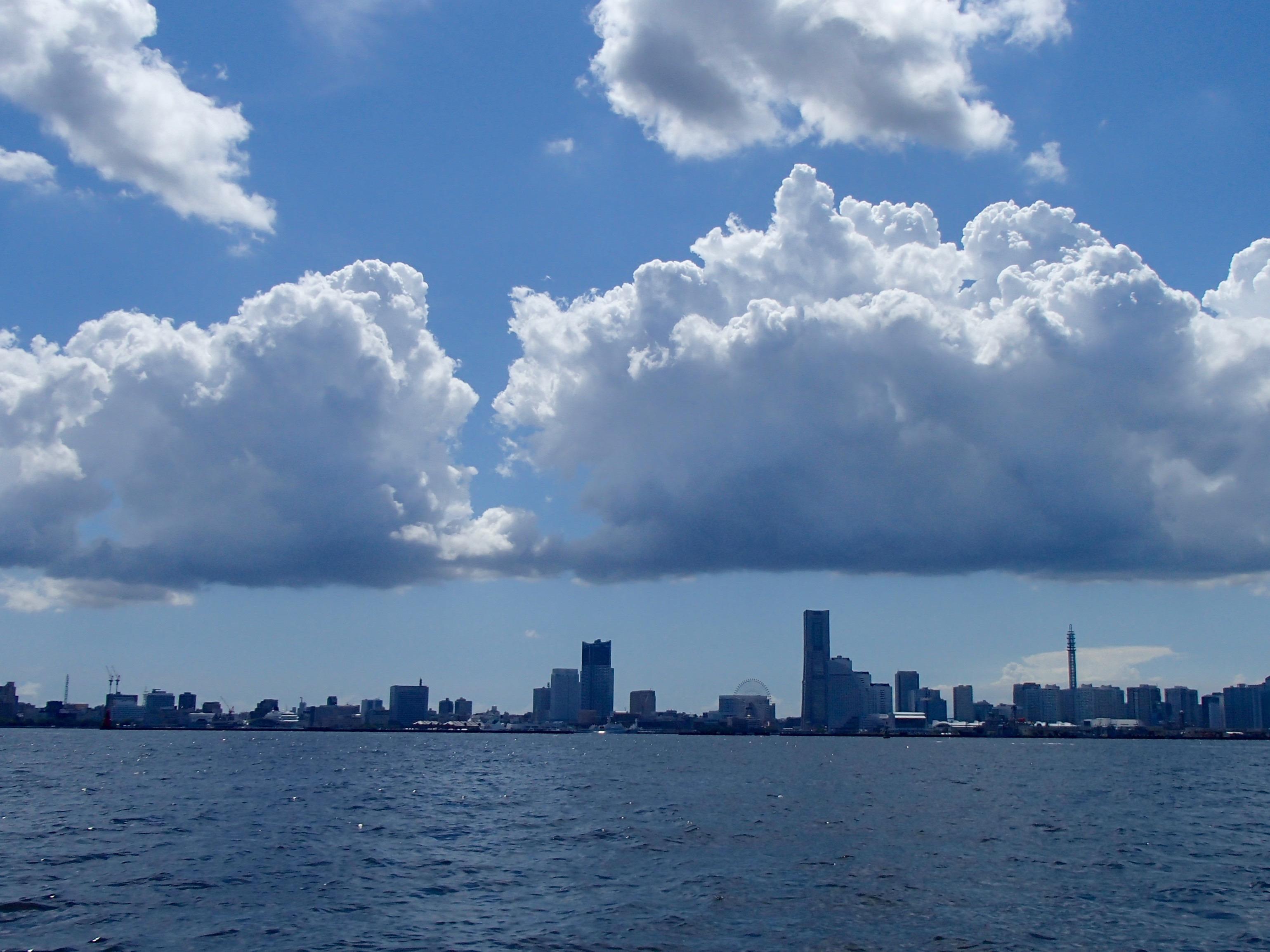グロテスクな私……「照りゴチ」です マダコ爆湧きの東京湾で