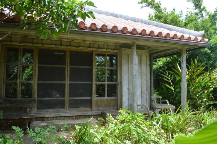沖縄で薬膳、ヴィーガン料理 体を気遣う島ごはんを訪ねて