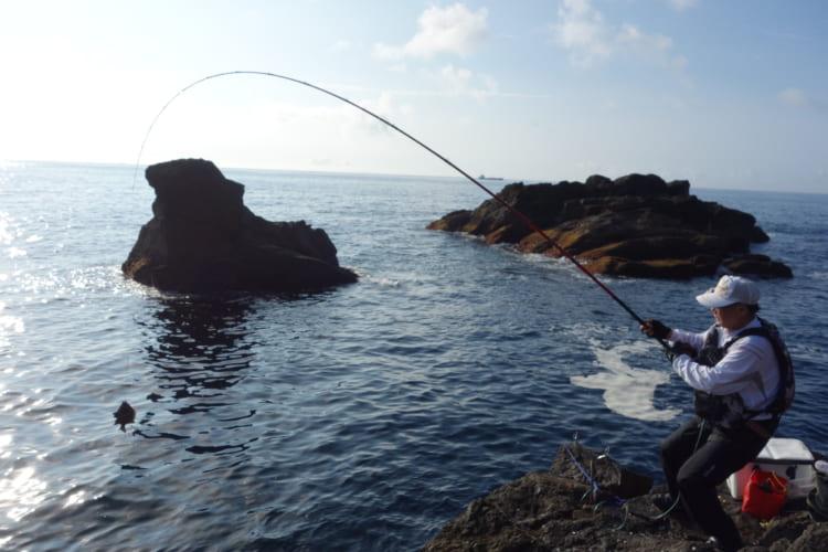 紀伊大島でイシガキダイ爆釣 カワハギも試した 和歌山県