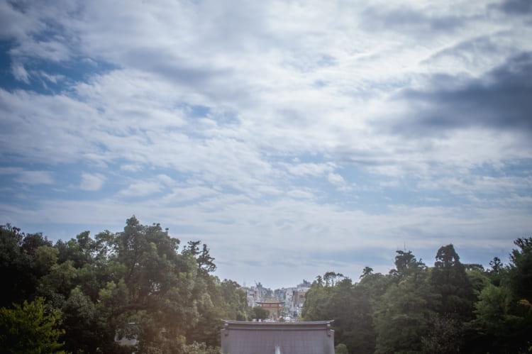 三カ月で消えた、私の恋 鶴岡八幡宮