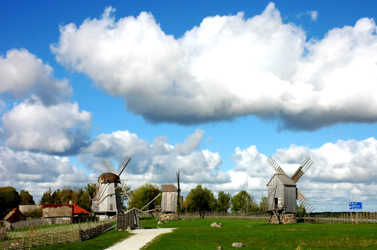 「太っちょマルガレータ」の塔とは? 1度は訪ねたいエストニア