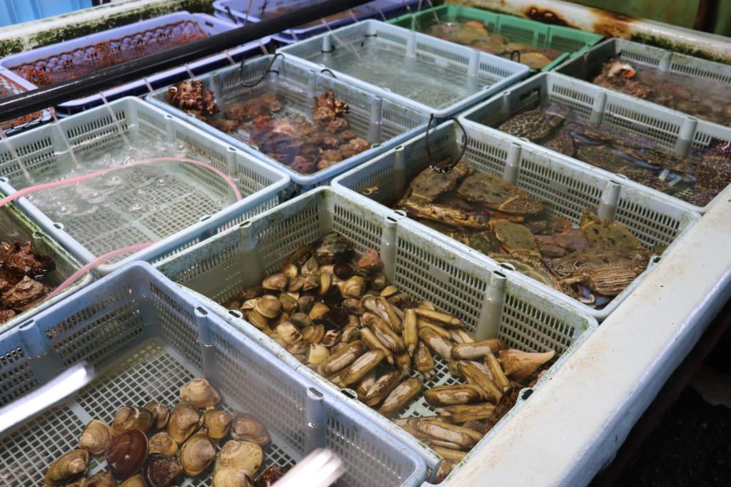 &編集長、週末ぶらり佐世保旅・前編 市場、横町、食べ物尽くし
