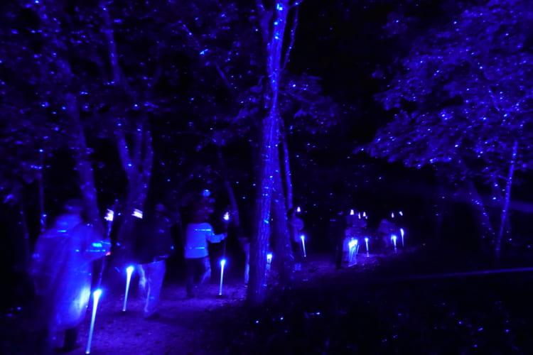 温泉+ナイトウォーク アイヌ文化に触れる阿寒湖温泉「あかん鶴雅別荘 鄙の座」
