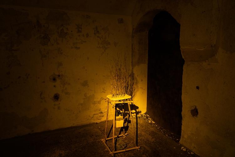 暗闇の「ラピュタ」の島へ スマホ封印、五感研ぎ澄ましアート鑑賞 横須賀・猿島