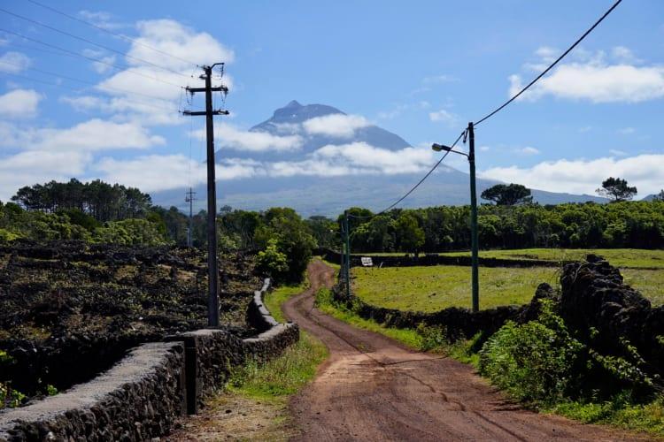 北大西洋のど真ん中 ピコ山ふもとのワイン ポルトガル領アソーレス諸島
