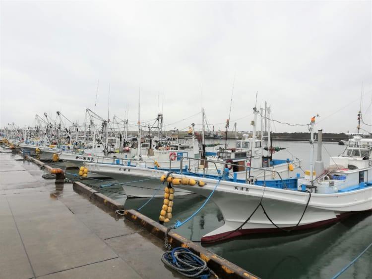 狙うは肉厚の大ヒラメ 厳寒の海へ 「ガルパン」の聖地・茨城県大洗町