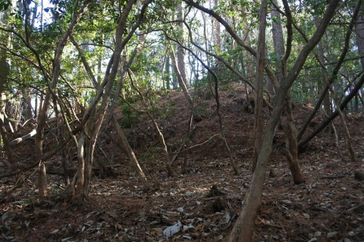 明知城でビギナーも「戦国の山城」体験! 落合砦・明知城・仲深山砦②